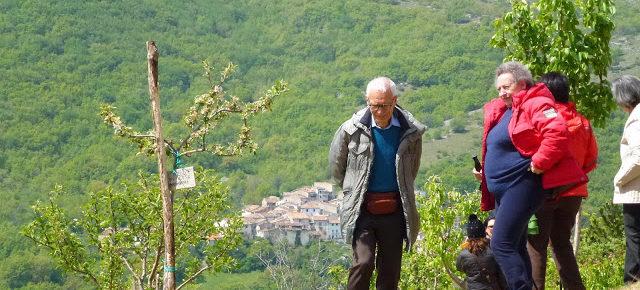 """Una colección de árboles de """"fruta olvidada"""" para no olvidar a las víctimas del terremoto de L'Aquila"""