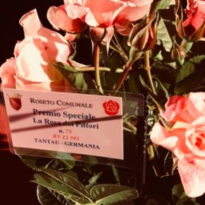 "Concurso Internacional ""Premio Roma"" 2018"