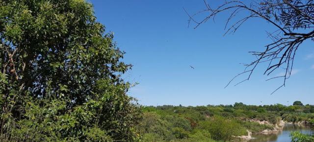 Un área verde fundamental para la salud de Villa Gobernador Gálvez (Departamento Rosario,Santa Fe) y zonas vecinas